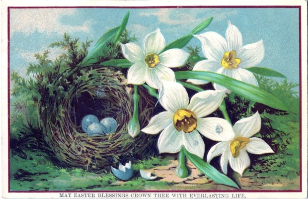 Royalty-Free-Image-Nest-Eggs-GraphicsFairy3