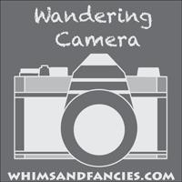 wandering_camera-200